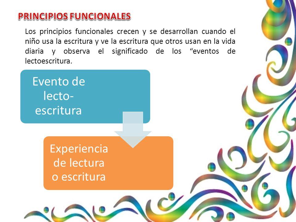 Los principios funcionales crecen y se desarrollan cuando el niño usa la escritura y ve la escritura que otros usan en la vida diaria y observa el significado de los eventos de lectoescritura.