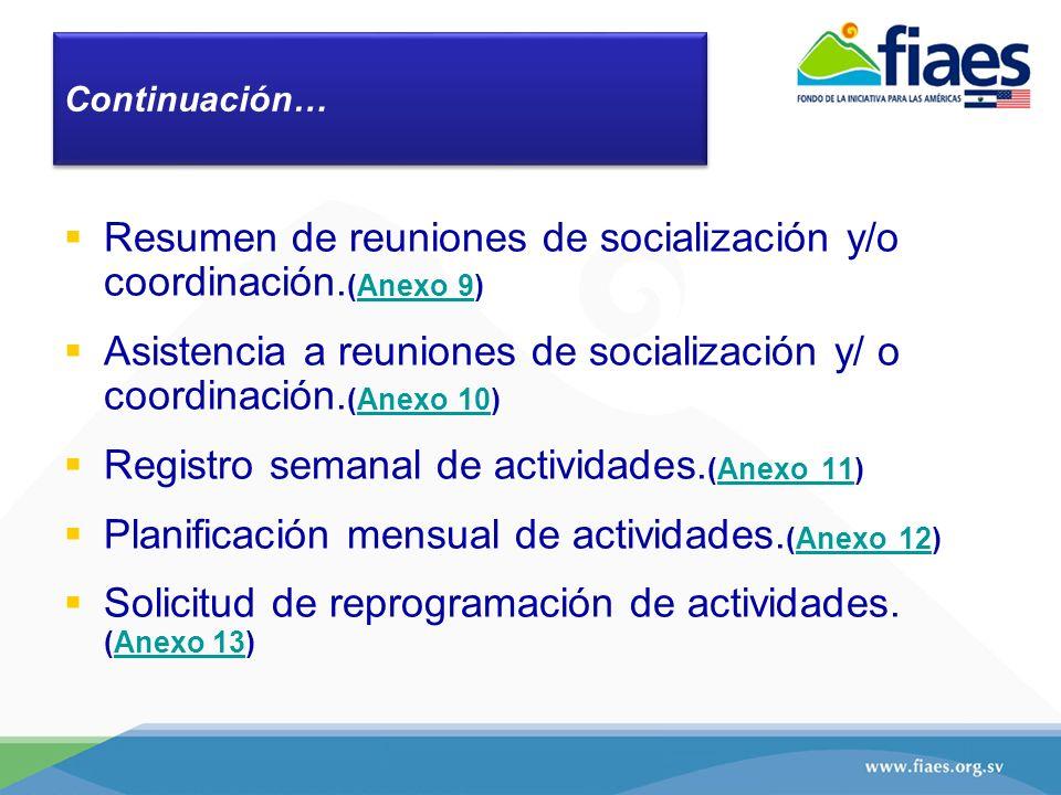 Resumen de reuniones de socialización y/o coordinación. (Anexo 9)Anexo 9 Asistencia a reuniones de socialización y/ o coordinación. (Anexo 10)Anexo 10