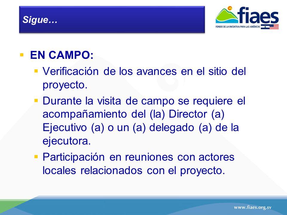 Sigue… EN CAMPO: Verificación de los avances en el sitio del proyecto. Durante la visita de campo se requiere el acompañamiento del (la) Director (a)