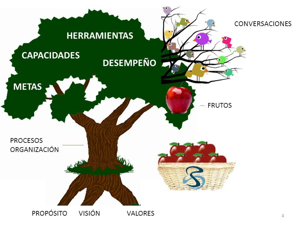 PROPÓSITOVISIÓN VALORES PROCESOS ORGANIZACIÓN METAS CAPACIDADES HERRAMIENTAS DESEMPEÑO CONVERSACIONES FRUTOS 4