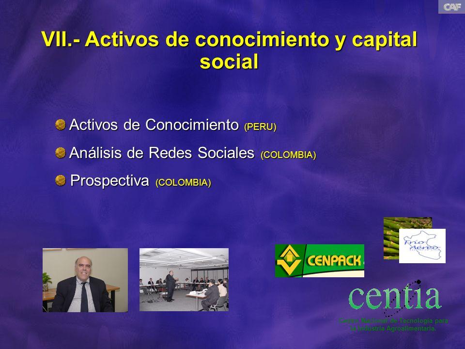 VII.- Activos de conocimiento y capital social Activos de Conocimiento (PERU) Activos de Conocimiento (PERU) Análisis de Redes Sociales (COLOMBIA) Análisis de Redes Sociales (COLOMBIA) Prospectiva (COLOMBIA) Prospectiva (COLOMBIA) Centro Nacional de Tecnología para la Industria Agroalimentaria.
