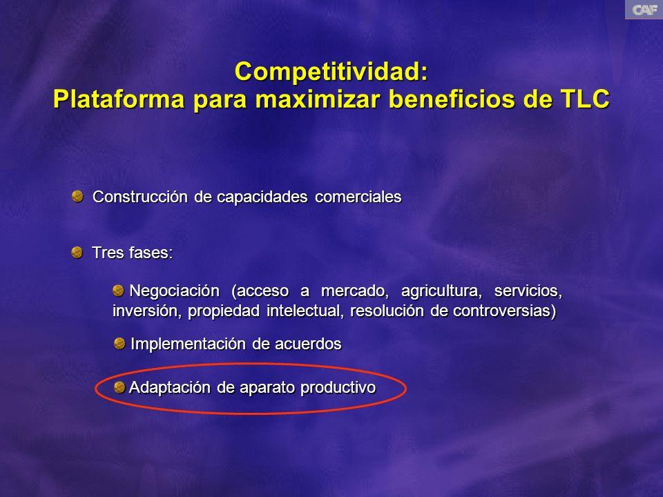 Competitividad: Plataforma para maximizar beneficios de TLC Construcción de capacidades comerciales Construcción de capacidades comerciales Tres fases: Tres fases: Negociación (acceso a mercado, agricultura, servicios, inversión, propiedad intelectual, resolución de controversias) Negociación (acceso a mercado, agricultura, servicios, inversión, propiedad intelectual, resolución de controversias) Implementación de acuerdos Implementación de acuerdos Adaptación de aparato productivo Adaptación de aparato productivo