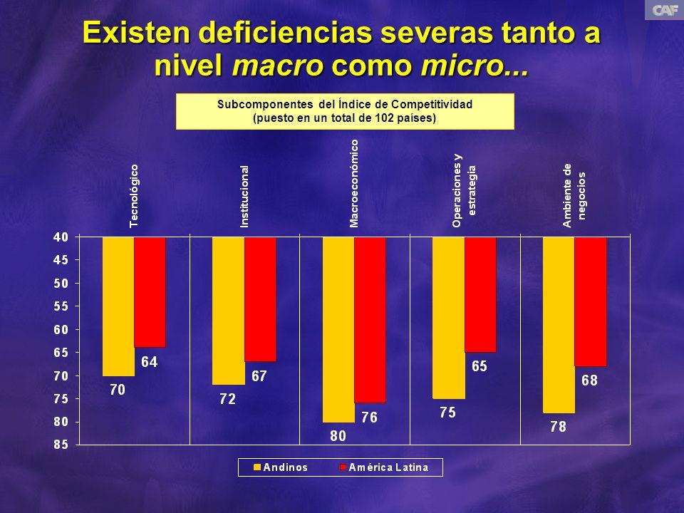 Existen deficiencias severas tanto a nivel macro como micro...