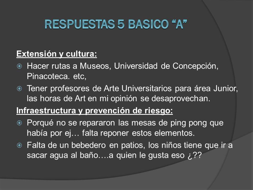 Extensión y cultura: Hacer rutas a Museos, Universidad de Concepción, Pinacoteca. etc, Tener profesores de Arte Universitarios para área Junior, las h