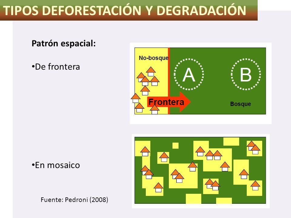 TIPOS DEFORESTACIÓN Y DEGRADACIÓN Patrón espacial: De frontera En mosaico Fuente: Pedroni (2008)