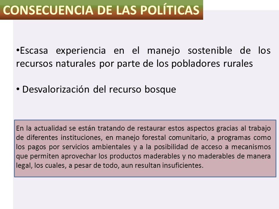 CONSECUENCIA DE LAS POLÍTICAS Escasa experiencia en el manejo sostenible de los recursos naturales por parte de los pobladores rurales Desvalorización
