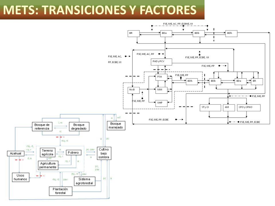 METS: TRANSICIONES Y FACTORES