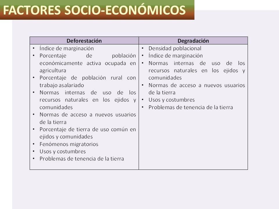 FACTORES SOCIO-ECONÓMICOS