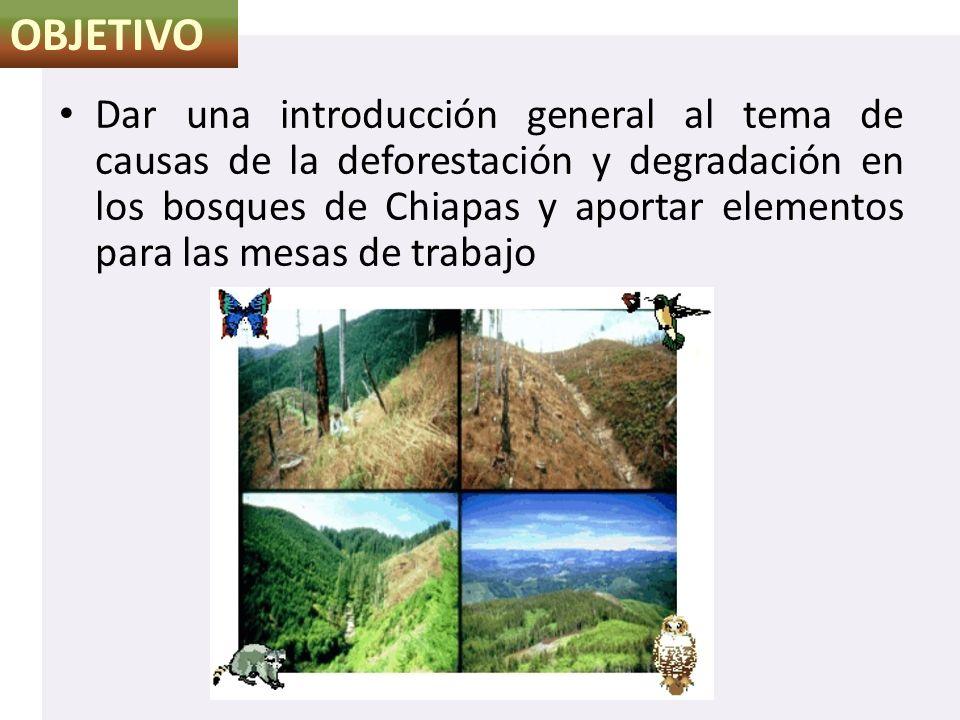 Dar una introducción general al tema de causas de la deforestación y degradación en los bosques de Chiapas y aportar elementos para las mesas de traba