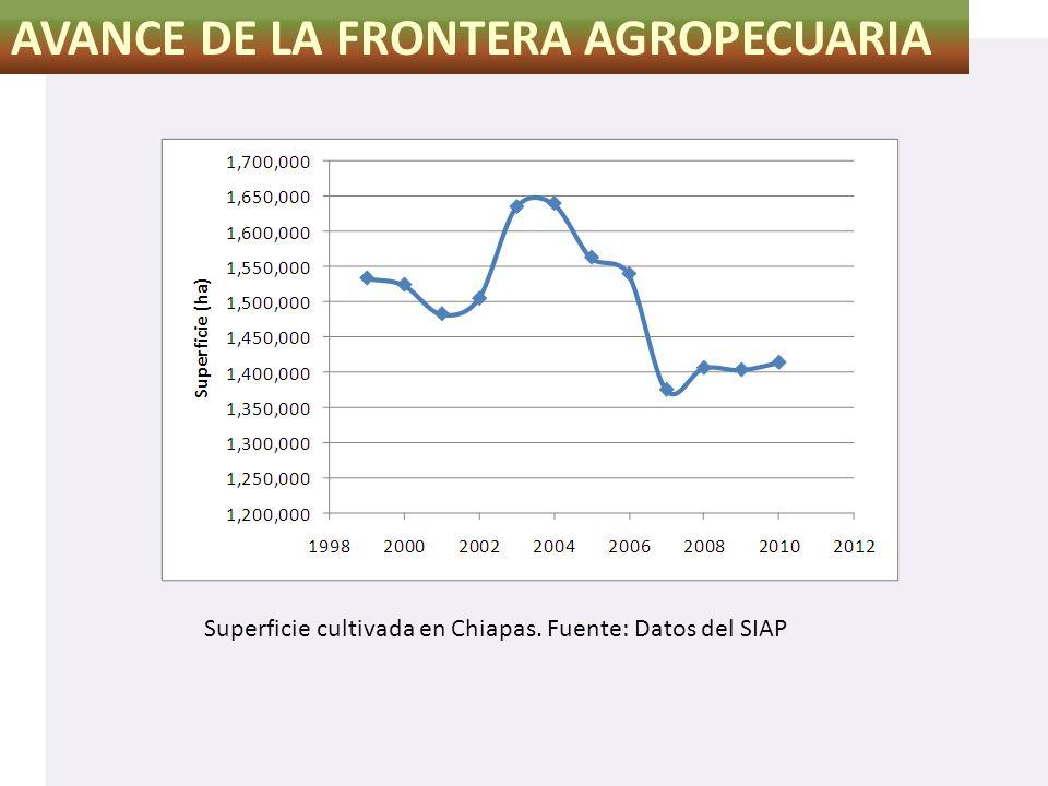AVANCE DE LA FRONTERA AGROPECUARIA Superficie cultivada en Chiapas. Fuente: Datos del SIAP