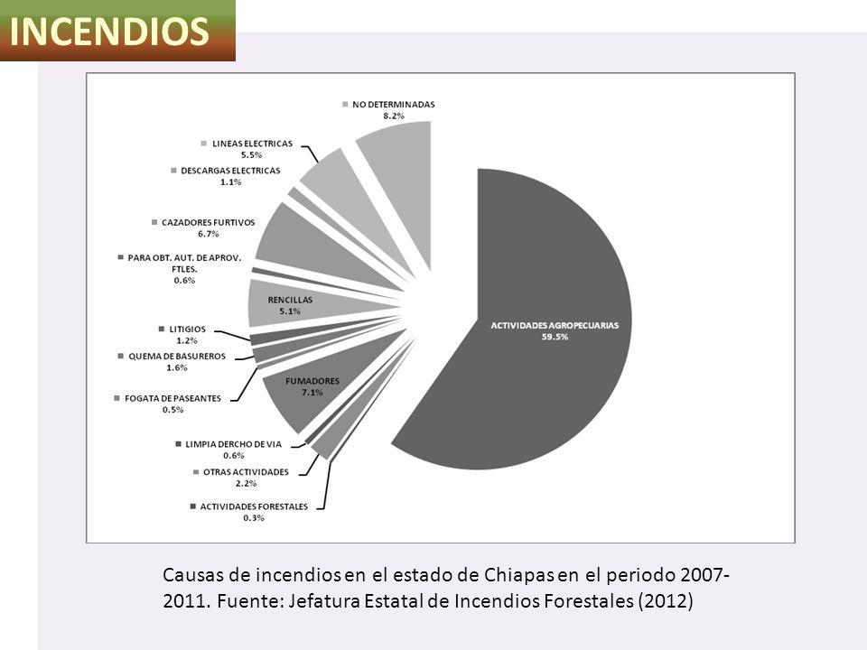INCENDIOS Causas de incendios en el estado de Chiapas en el periodo 2007- 2011. Fuente: Jefatura Estatal de Incendios Forestales (2012)