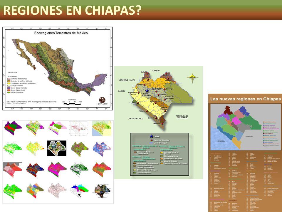 REGIONES EN CHIAPAS?