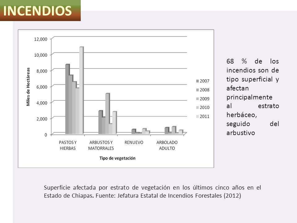 INCENDIOS Superficie afectada por estrato de vegetación en los últimos cinco años en el Estado de Chiapas. Fuente: Jefatura Estatal de Incendios Fores