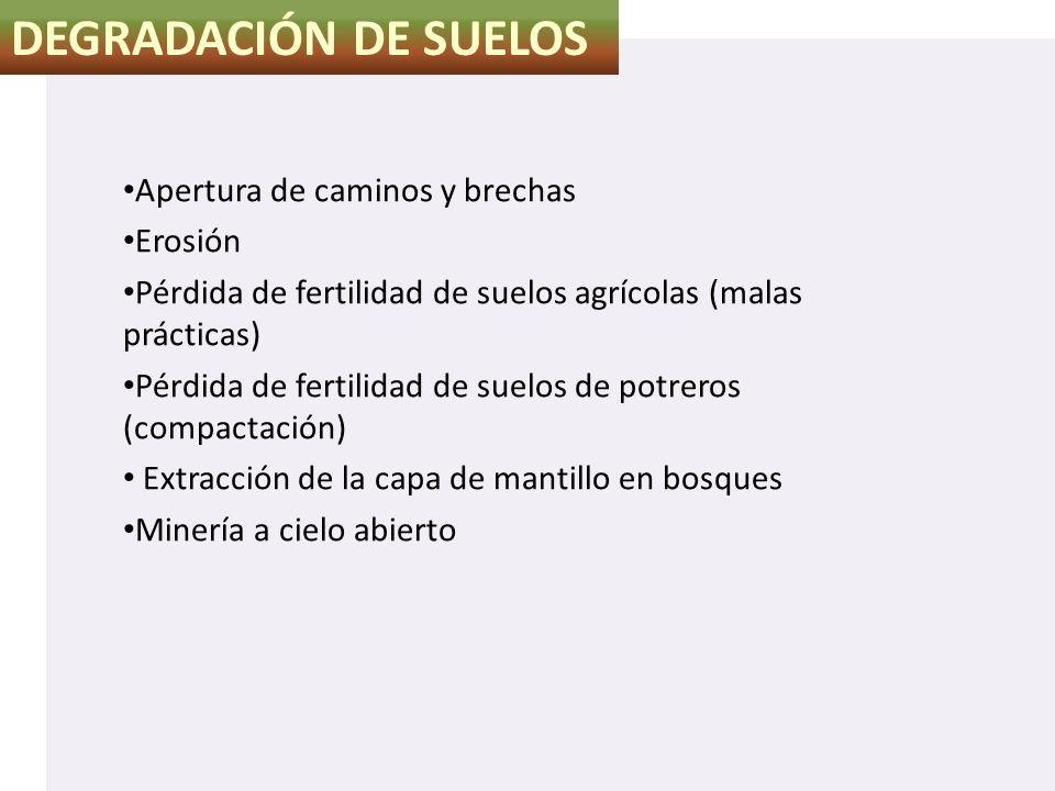 DEGRADACIÓN DE SUELOS Apertura de caminos y brechas Erosión Pérdida de fertilidad de suelos agrícolas (malas prácticas) Pérdida de fertilidad de suelo