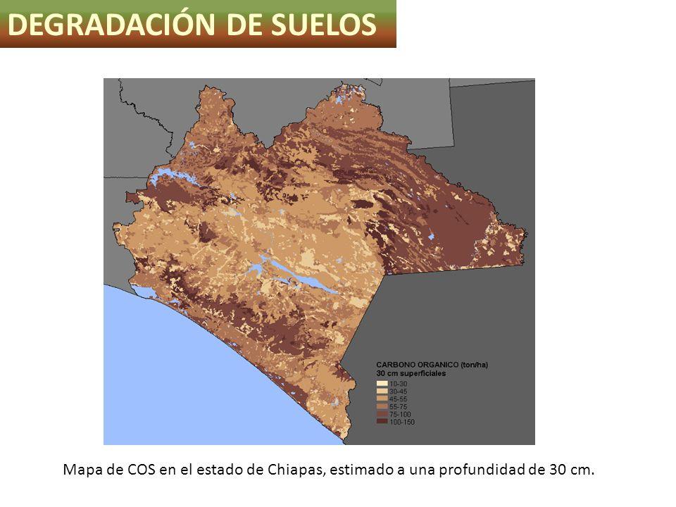 Mapa de COS en el estado de Chiapas, estimado a una profundidad de 30 cm. DEGRADACIÓN DE SUELOS