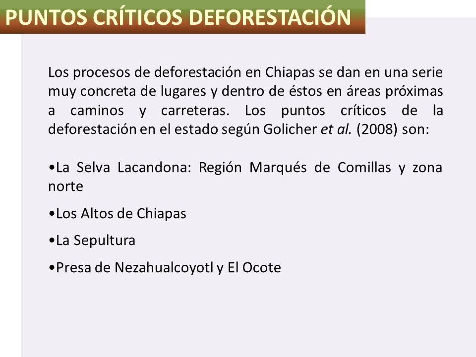 PUNTOS CRÍTICOS DEFORESTACIÓN Los procesos de deforestación en Chiapas se dan en una serie muy concreta de lugares y dentro de éstos en áreas próximas