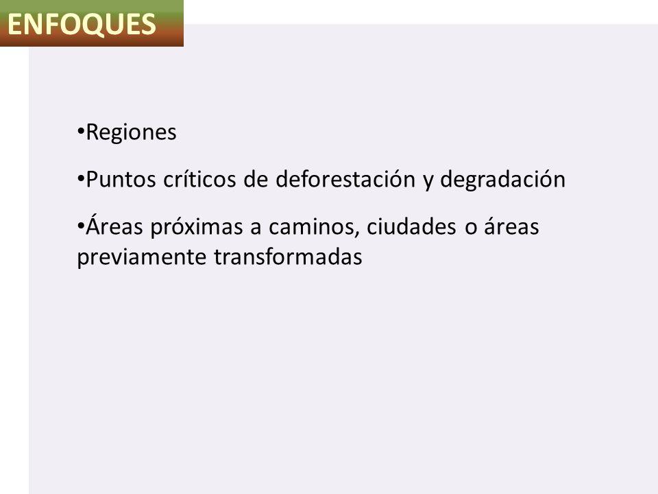 ENFOQUES Regiones Puntos críticos de deforestación y degradación Áreas próximas a caminos, ciudades o áreas previamente transformadas