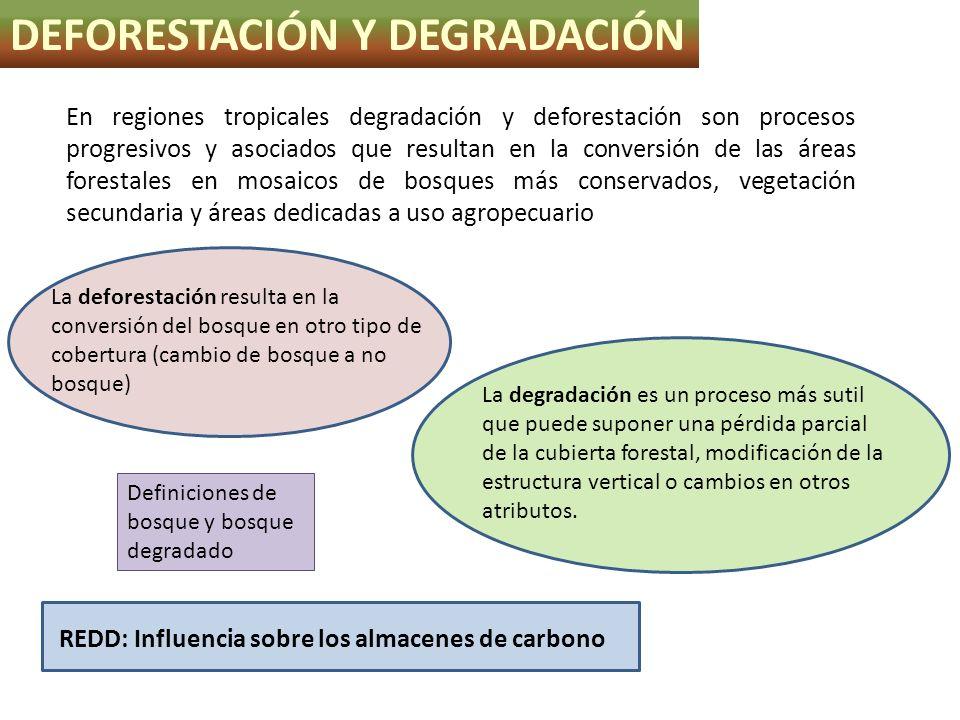 La deforestación resulta en la conversión del bosque en otro tipo de cobertura (cambio de bosque a no bosque) DEFORESTACIÓN Y DEGRADACIÓN La degradaci