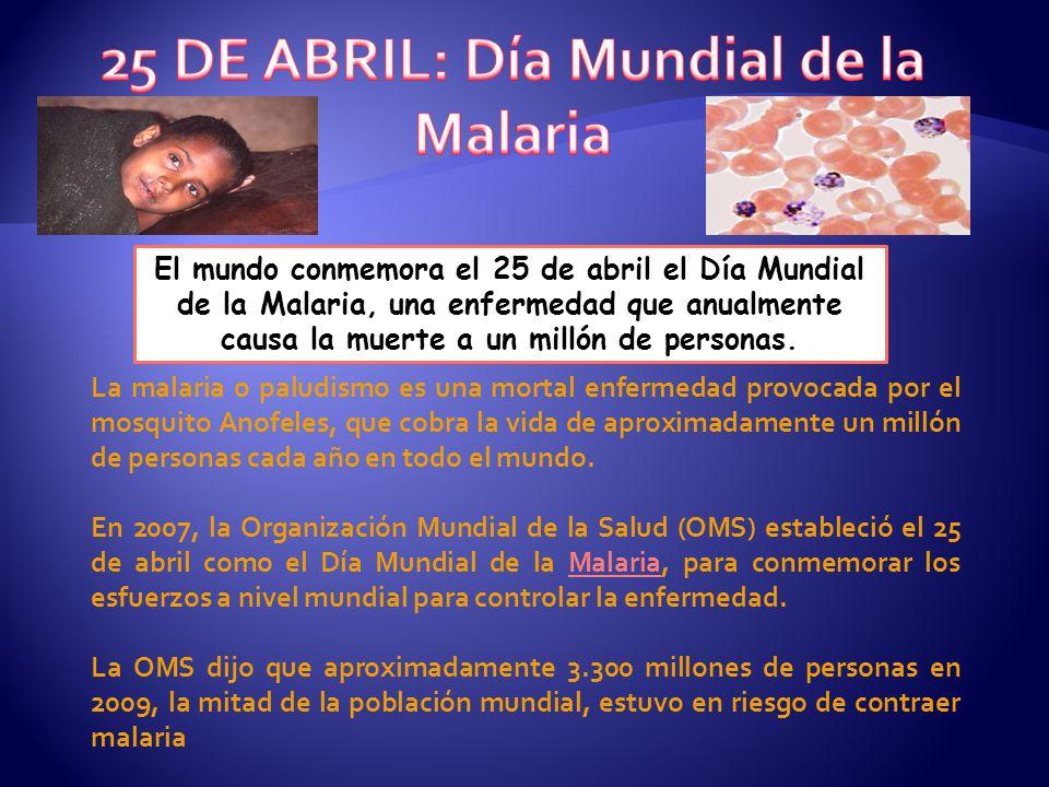 El mundo conmemora el 25 de abril el Día Mundial de la Malaria, una enfermedad que anualmente causa la muerte a un millón de personas. La malaria o pa
