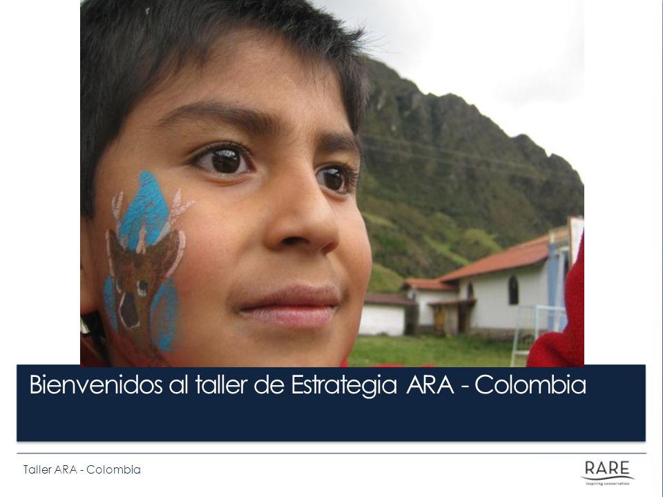 Taller ARA - Colombia Bienvenidos al taller de Estrategia ARA - Colombia
