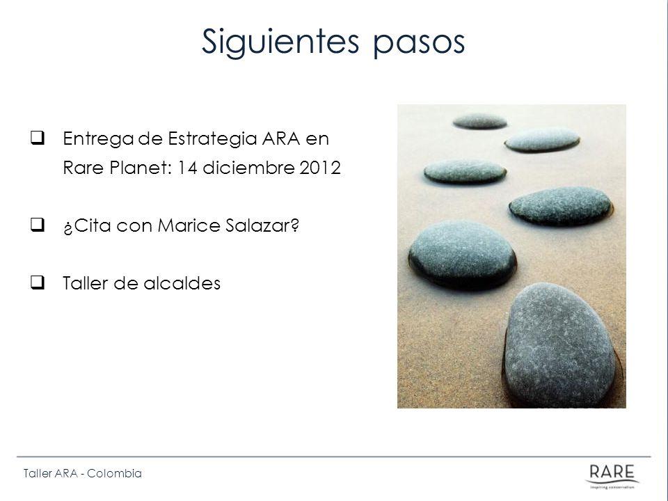 Taller ARA - Colombia Siguientes pasos Entrega de Estrategia ARA en Rare Planet: 14 diciembre 2012 ¿Cita con Marice Salazar.