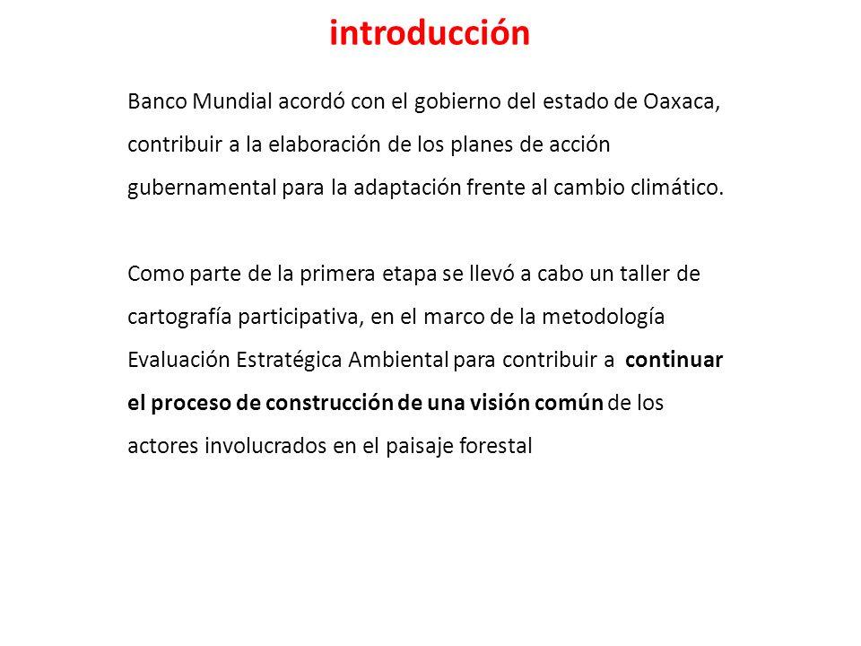 El taller arrojó resultados positivos para coadyuvar al proceso de elaboración de políticas públicas relacionadas con la adaptación frente al cambio climático en el paisaje forestal de Oaxaca.