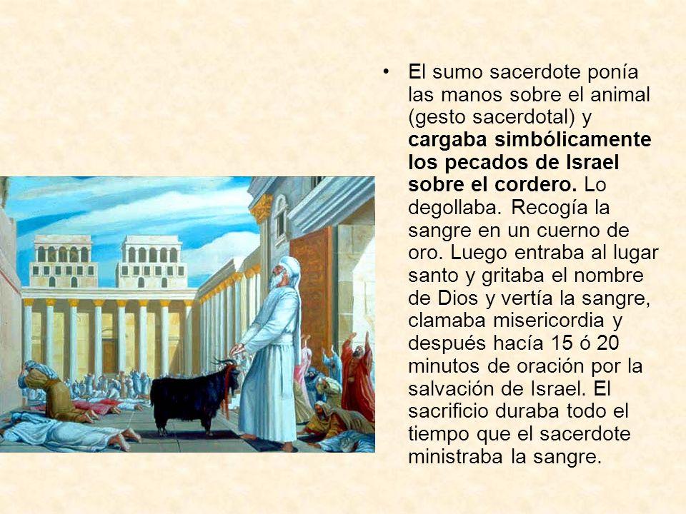 El sumo sacerdote ponía las manos sobre el animal (gesto sacerdotal) y cargaba simbólicamente los pecados de Israel sobre el cordero. Lo degollaba. Re