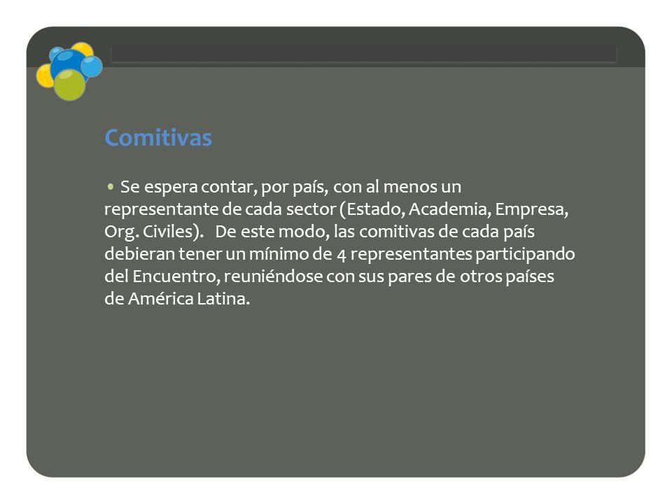 Comitivas Se espera contar, por país, con al menos un representante de cada sector (Estado, Academia, Empresa, Org. Civiles). De este modo, las comiti