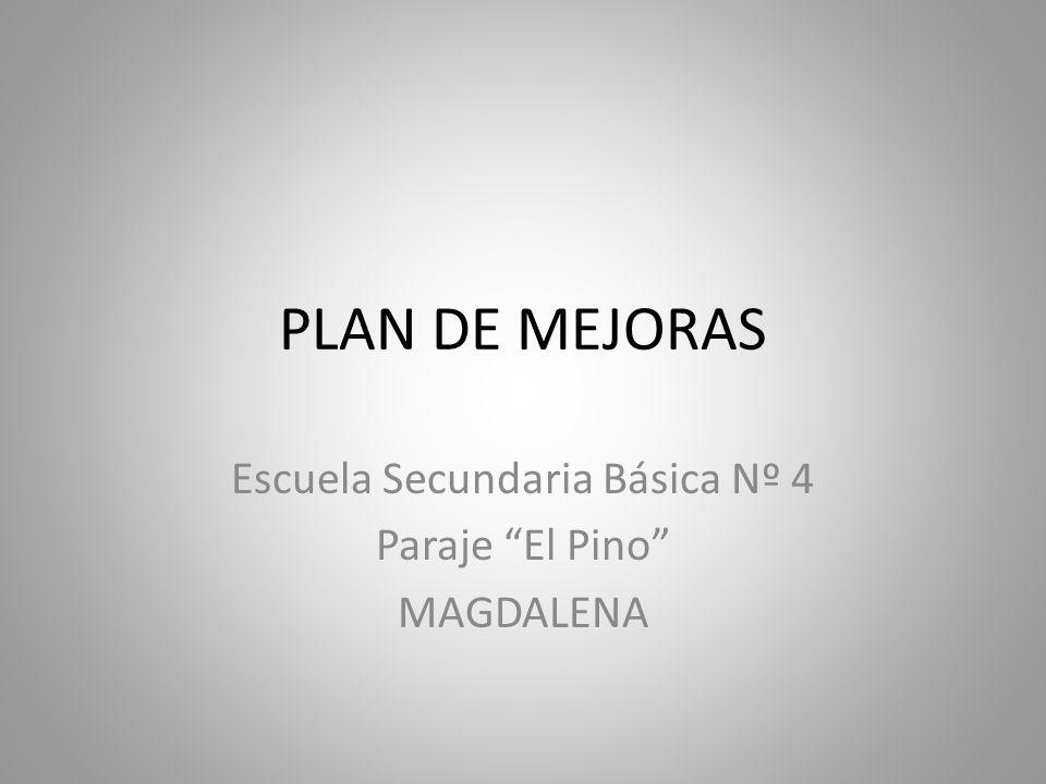 PLAN DE MEJORAS Escuela Secundaria Básica Nº 4 Paraje El Pino MAGDALENA