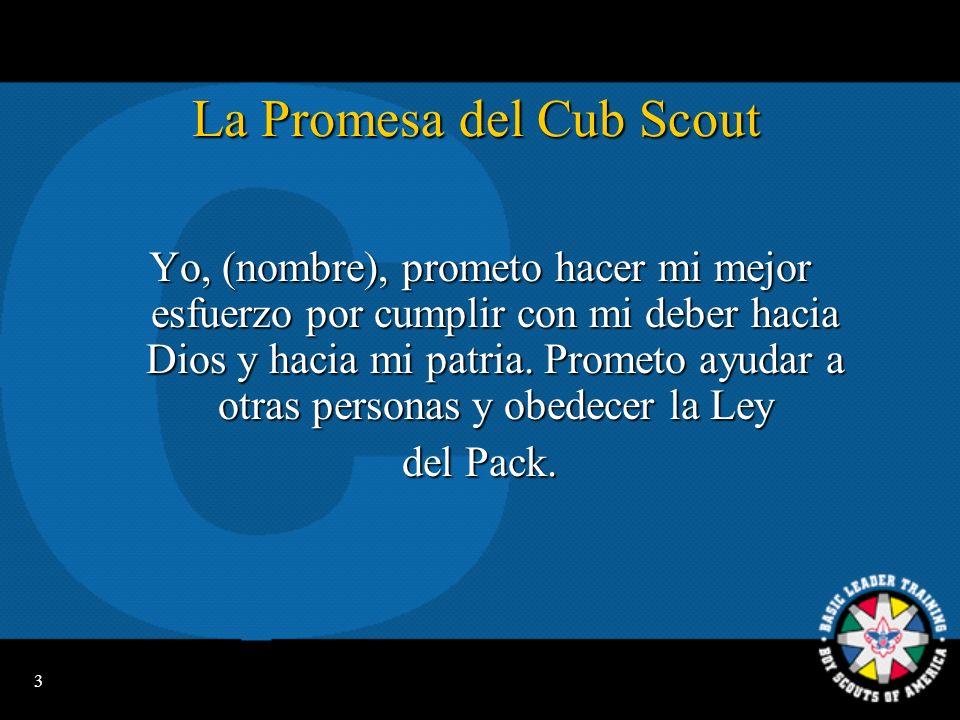 13 Uniformes de Líderes Adultos Cub Scout