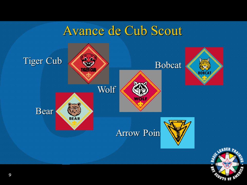 9 Avance de Cub Scout Bobcat Bear ArrowPoints Arrow Points Wolf Tiger Cub