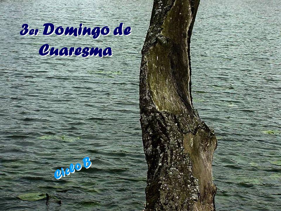3 er Domingo de Cuaresma 3 er Domingo de Cuaresma Ciclo B