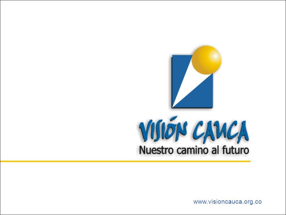 www.visioncauca.org.co