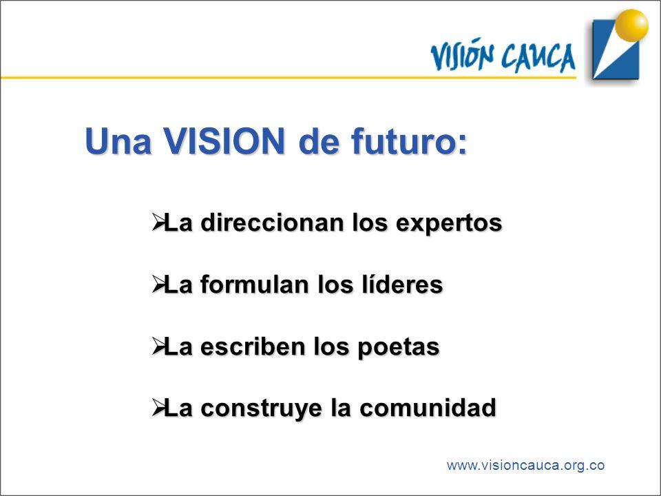 www.visioncauca.org.co Una VISION de futuro: La direccionan los expertos La direccionan los expertos La formulan los líderes La formulan los líderes L