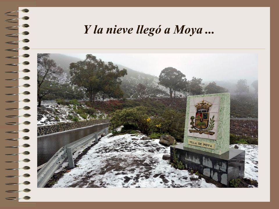 Y la nieve llegó a Moya...