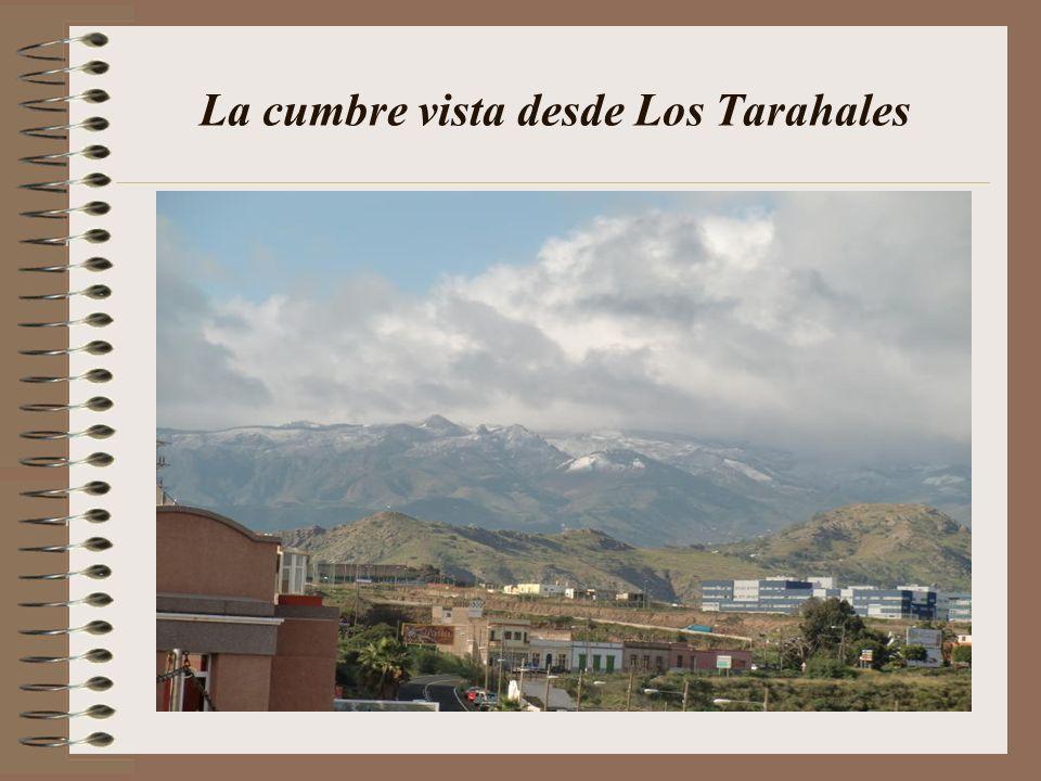 La cumbre vista desde Los Tarahales