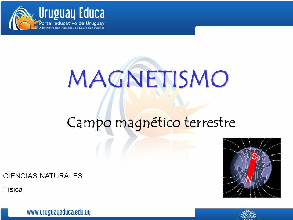 MAGNETISMO Campo magnético terrestre CIENCIAS NATURALES Física