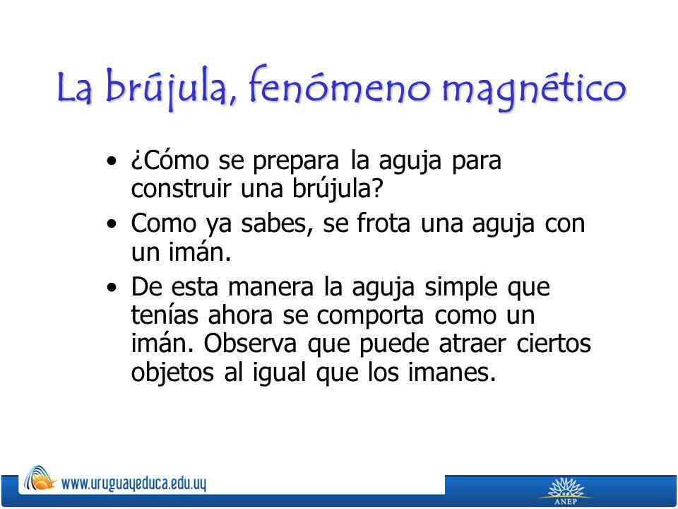La brújula, fenómeno magnético ¿Cómo se prepara la aguja para construir una brújula? Como ya sabes, se frota una aguja con un imán. De esta manera la