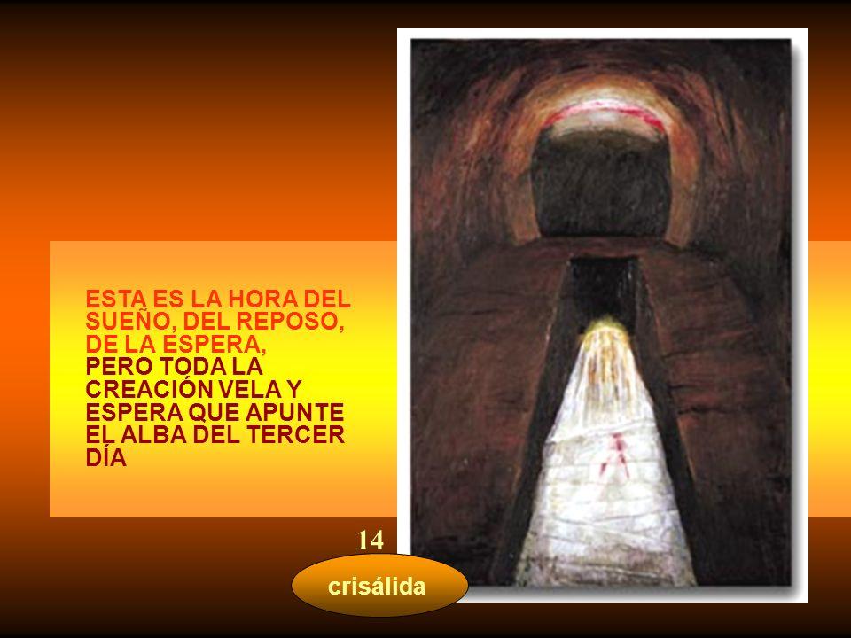 seno materno AYÚDANOS TÚ, MARÍA, A QUITAR LAS CADENAS INICUAS, A DESHACER LAS ATADURAS DEL YUGO, A ENVIAR LIBRES A LOS OPRIMIDOS 13