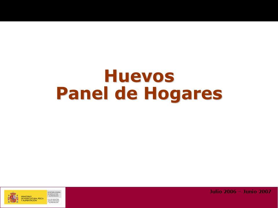 Huevos Panel de Hogares Julio 2006 – Junio 2007