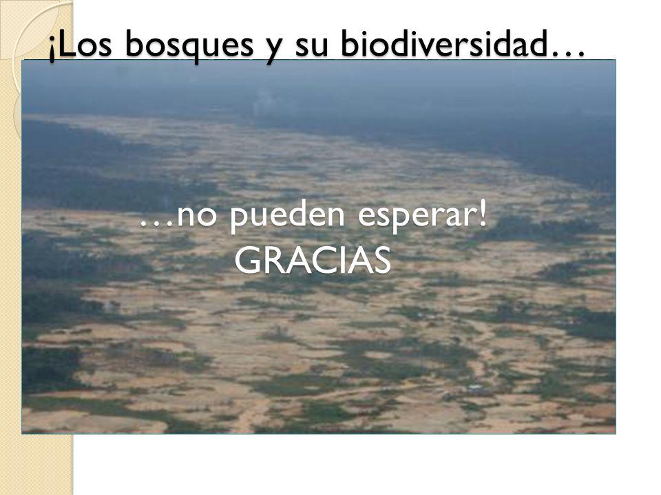 …no pueden esperar! GRACIAS ¡Los bosques y su biodiversidad…