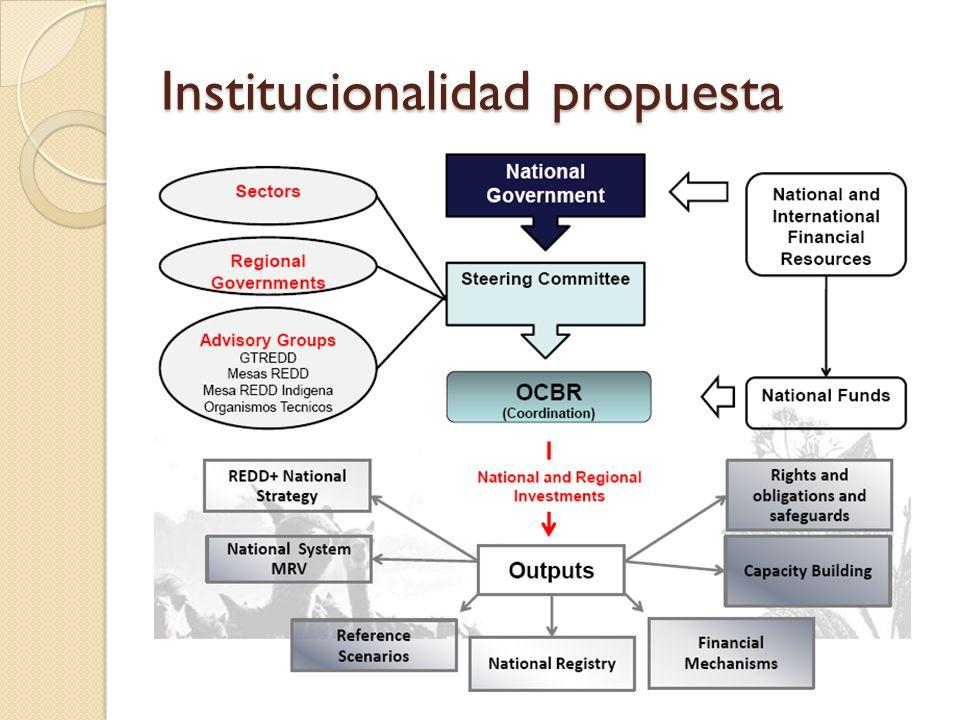 Monitoreo de salvaguardas Criterios para elegibilidad de REDD Check list de información básica conocida para involucramiento de comunidades Carácter voluntario Participación de Sociedad Civil a través de Mesa REDD (indígenas, ONGs, empresas, etc.) Análisis de co-beneficios más complejo (brokers inversionistas)