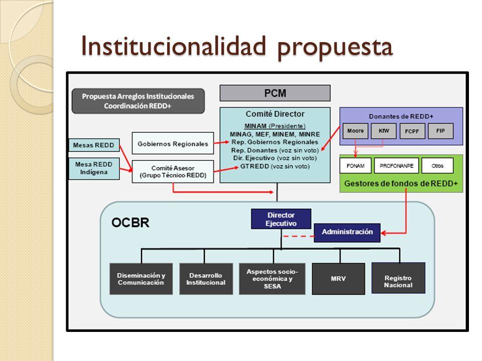 Mesa REDD Espacio de diálogo sociedad civil-Estado 42 instituciones a nivel nacional, 18 en MDD Estatutos aprobados Participación en GT-REDD Sub-grupos de trabajo: Técnico Legal Financiero-Transparencia Comunicaciones