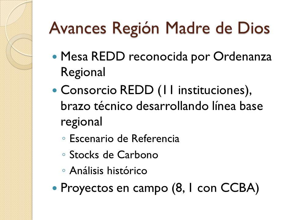 Avances Región Madre de Dios Mesa REDD reconocida por Ordenanza Regional Consorcio REDD (11 instituciones), brazo técnico desarrollando línea base regional Escenario de Referencia Stocks de Carbono Análisis histórico Proyectos en campo (8, 1 con CCBA)