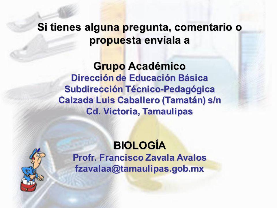 Si tienes alguna pregunta, comentario o propuesta envíala a Grupo Académico Dirección de Educación Básica Subdirección Técnico-Pedagógica Calzada Luis