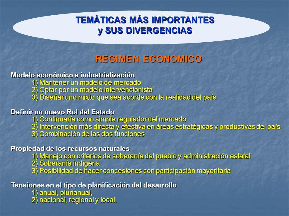 TEMÁTICAS MÁS IMPORTANTES y SUS DIVERGENCIAS Modelo económico e industrialización 1) Mantener un modelo de mercado 2) Optar por un modelo intervencion