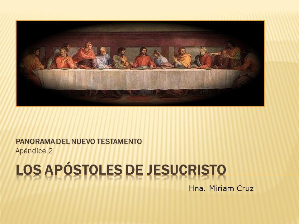 PANORAMA DEL NUEVO TESTAMENTOPANORAMA DEL NUEVO TESTAMENTO Apéndice 2 Hna. Miriam Cruz