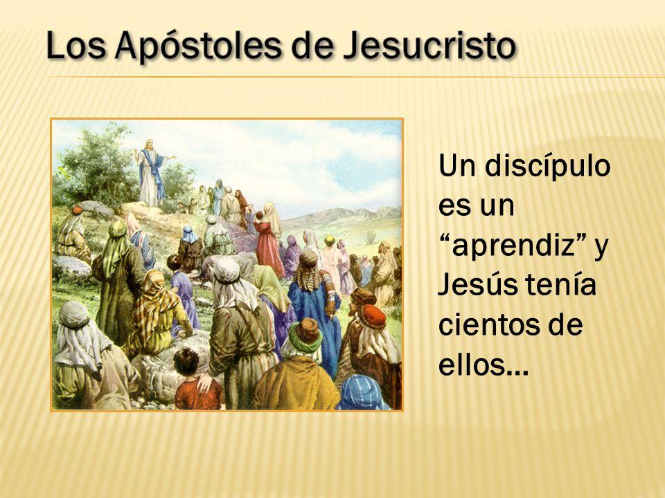 Un discípulo es un aprendiz y Jesús tenía cientos de ellos…