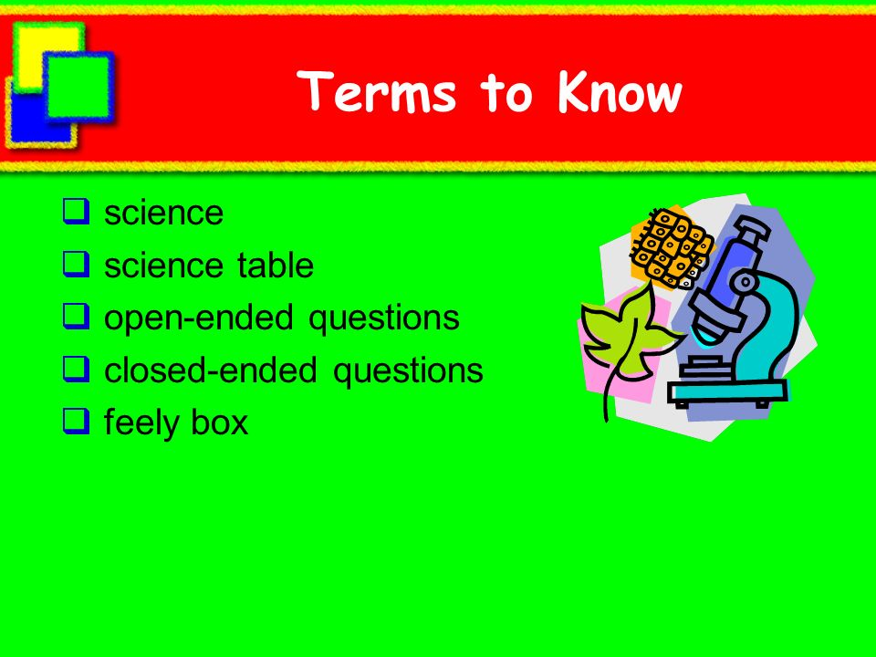 Terms to Know science science table open-ended questions closed-ended questions feely box