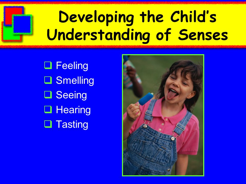 Developing the Childs Understanding of Senses Feeling Smelling Seeing Hearing Tasting